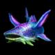wopal-shark